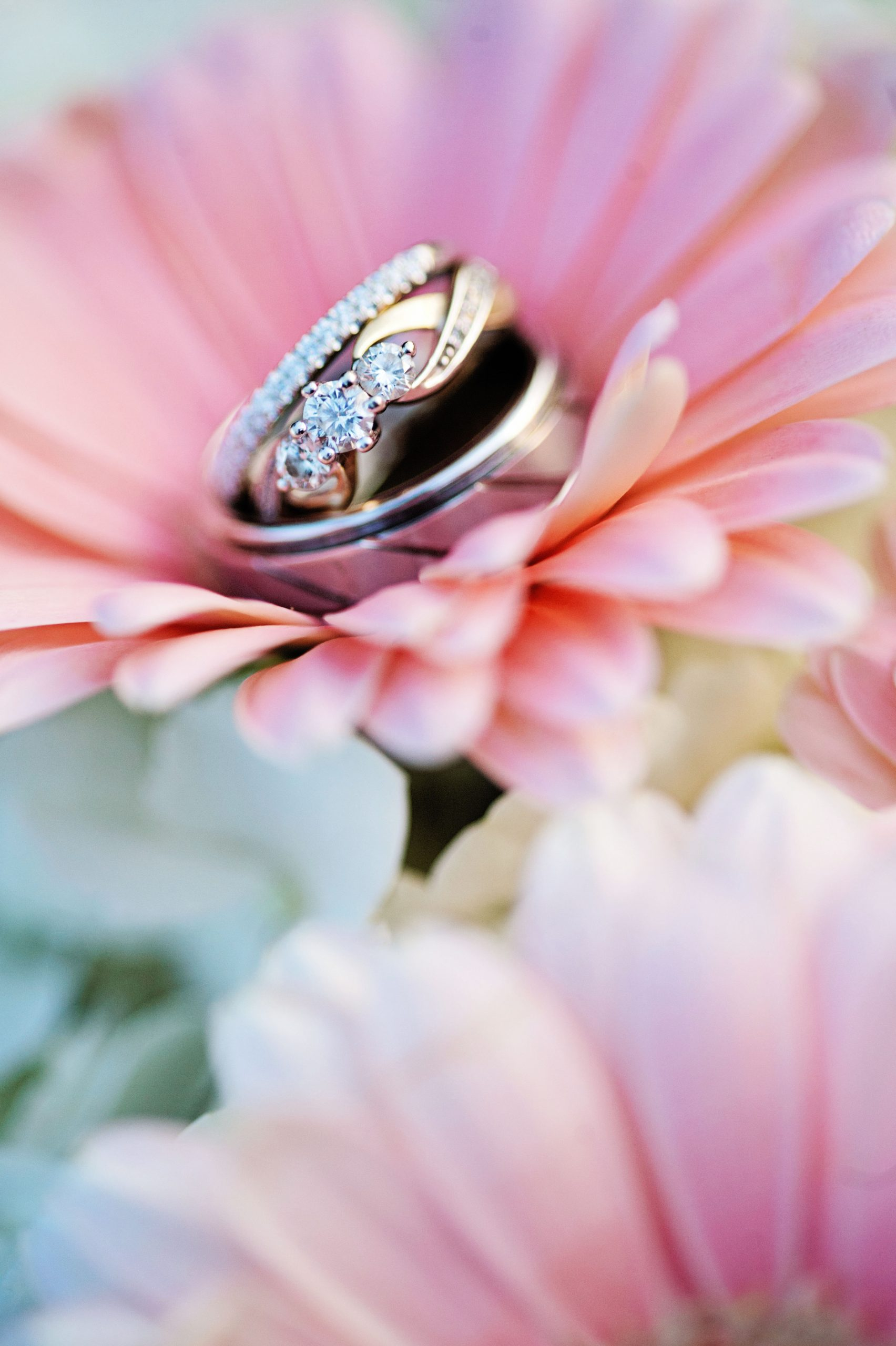 Beautifully in focus by Lovefusion Photography, the newlyweds wedding bands are cushioned by pink dusted daisies at Lakeview Farms of York, PA. Lakeview Farms of York, PA offers couples a chance to bring it down a notch and really wnjoy the company you have. Lovefusion beautifully displays that with this picture of the simple, yet elegant reception hall. Featured on Dream Weddings.
